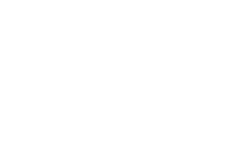 SPECIAL SPRINGS S.R.L.